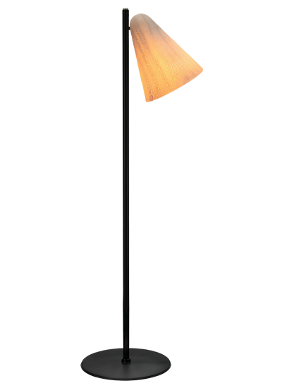 floorlamp-dragonfly-on-with-black-frame