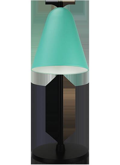 tablelamp-green-with-black-frame1